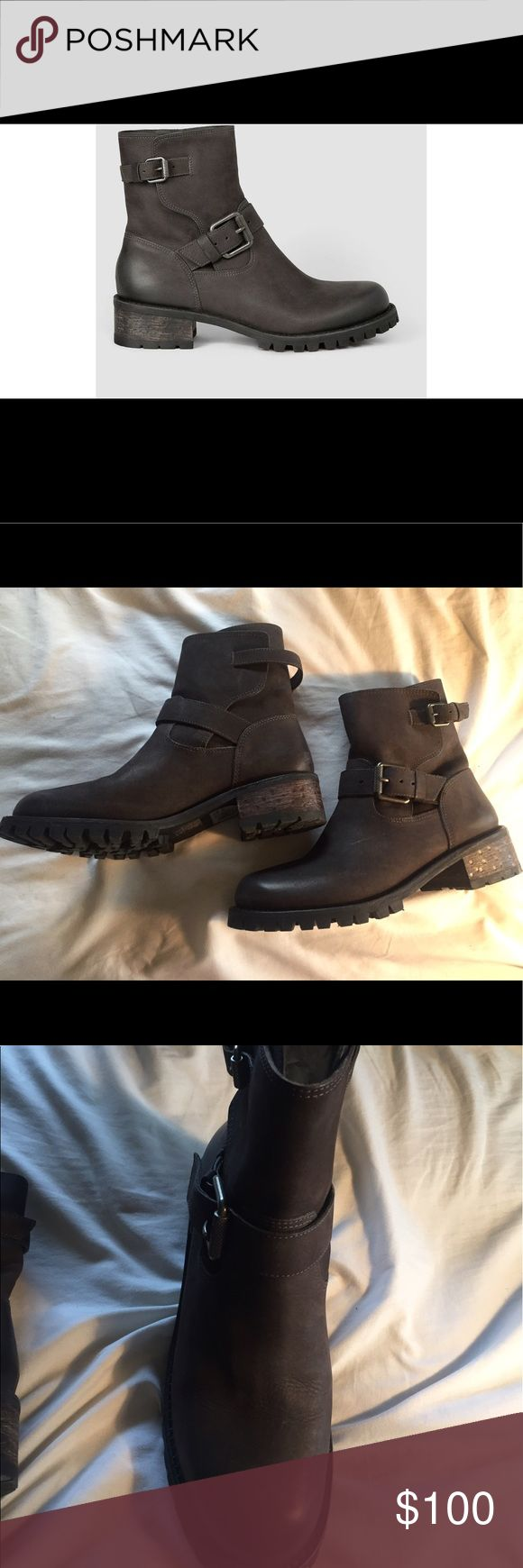 NIB ALLSAINTS Shoreditch Buckle Brown Boots 8.5 Buckle boots, block heel, round toe 100% leather made in Brazil. Never worn, only tried on in store. Retailed for $540, priced to sell quick! All Saints Shoes Combat & Moto Boots