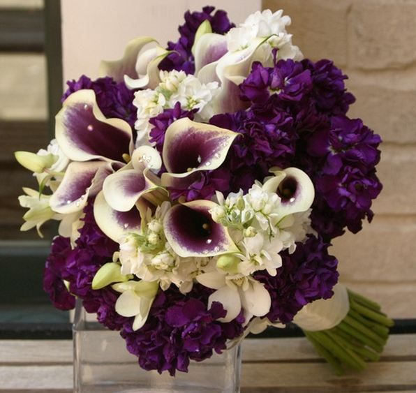 Wedding Wedding Flower Purple Bouquets Brides Bouquets Purple
