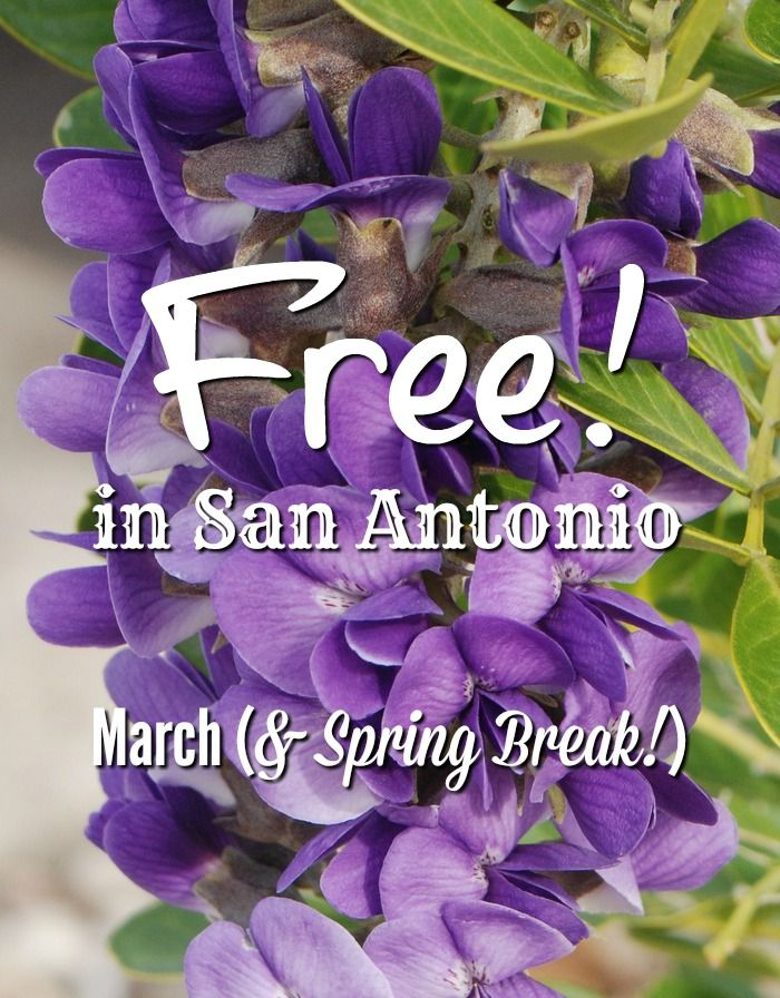 Free family fun in San Antonio during March and Spring Break 2016!  Great info! http://www.over50feeling40.com