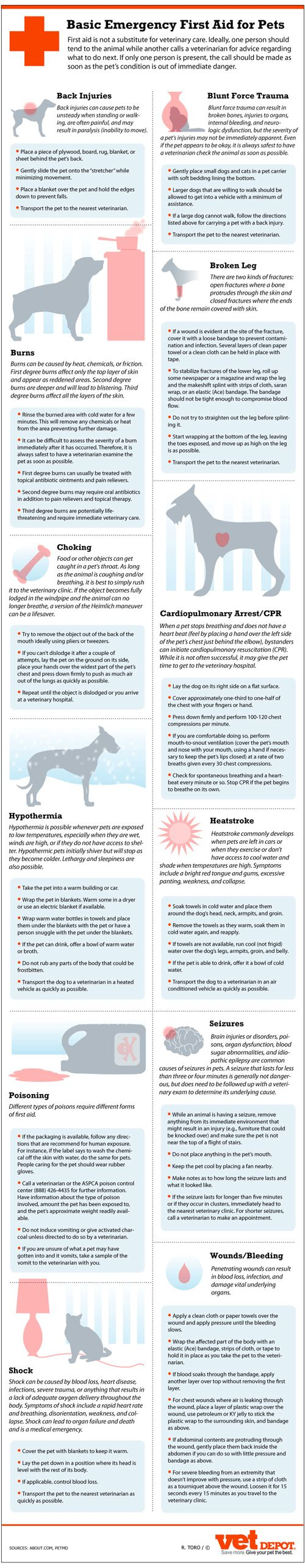 Basic Emergency First Aid for Pets Infographic
