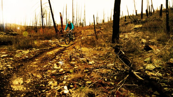 Remember to pack your bike.  There are many great trails to explore.   #explorekelowna #mountainbiking #windinmyhair