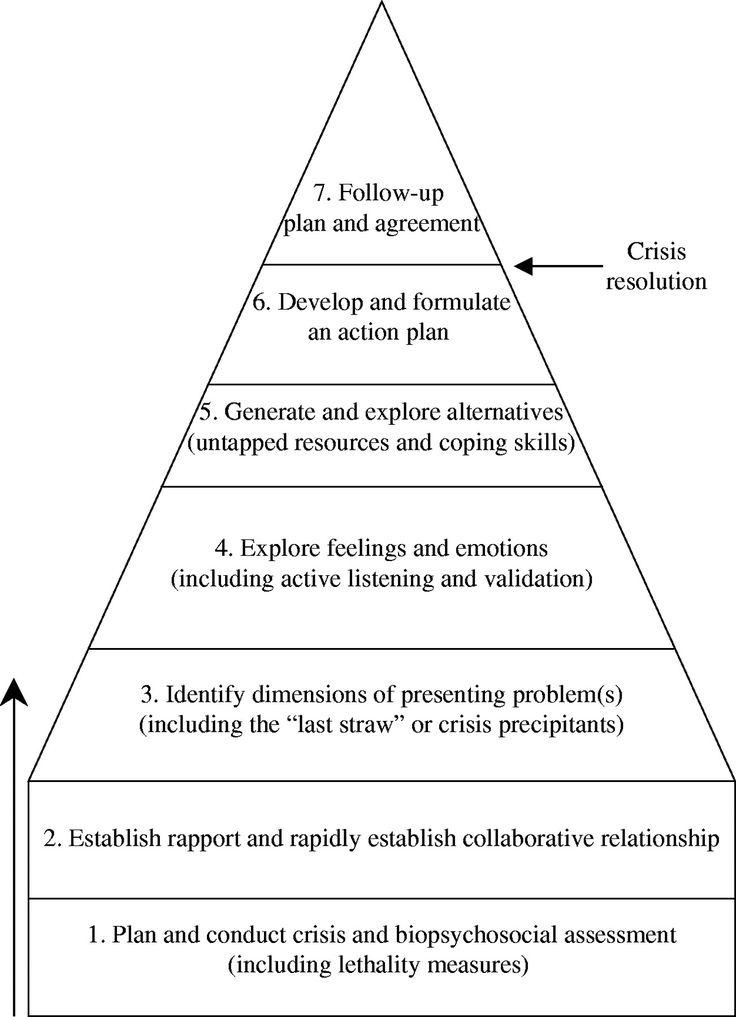 Roberts 7 Stage Crisis Intervention Model