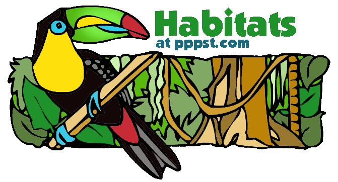 Habitats/Ecosystems - FREE presentations in PowerPoint format, interactive activities, lessons for K-12