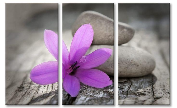 Foto schilderij paarse bloem (kleuraccent) op canvas.  Te koop als drieluik of een geheel.