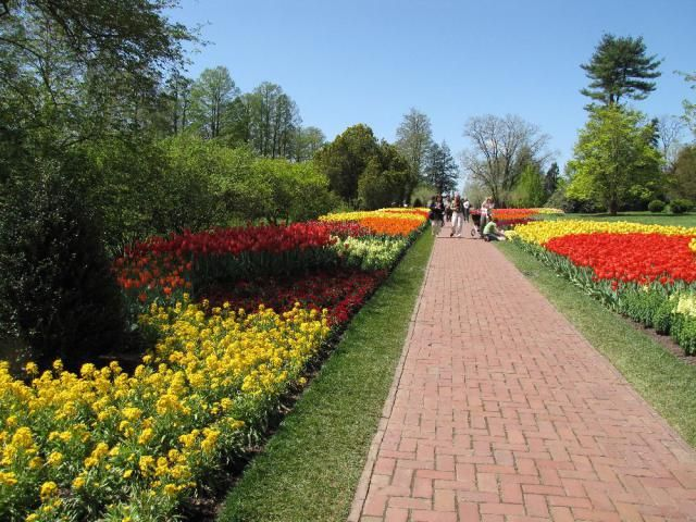 See all you need to know about the Brandywine Valley, including information about historic attractions, art museums, scenic countryside and more.