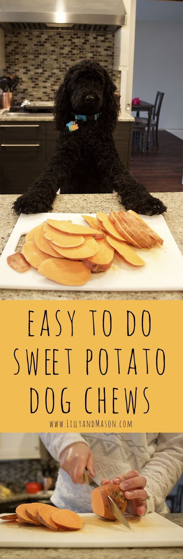Save $20 and make your dog's favorite sweet potato chew right at your own home. One ingredient, 3 hours, and a hot oven will get you exactly what your pup is looking for. Visit www.lillyandmason.com to see the easy to do recipe today!