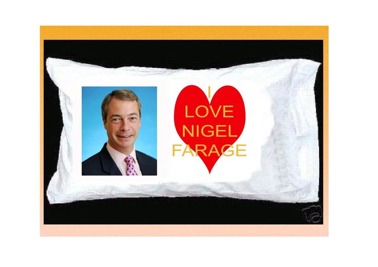NIGEL FARAGE PILLOWCASE, UKIP: Amazon.co.uk: Kitchen & Home