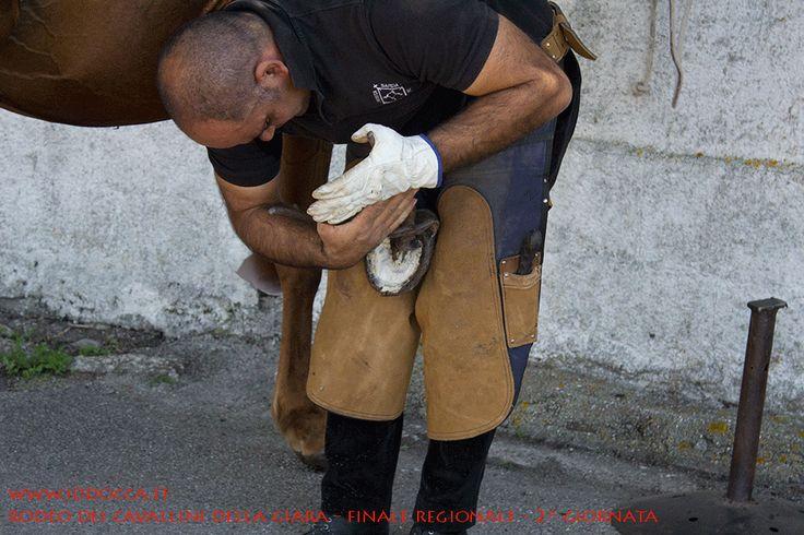 Dimostrazione ferratura ad opera di un abilissimo maniscalco