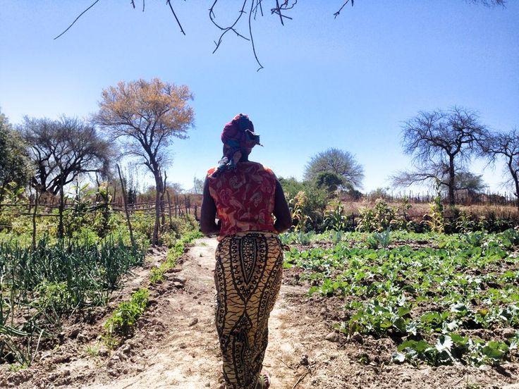 Hotel Review: Royal Chundu in Zambia