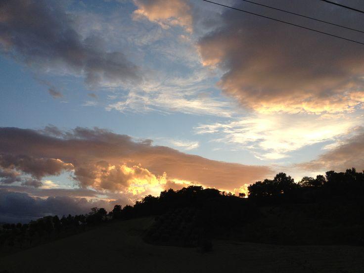 sunset Carassai