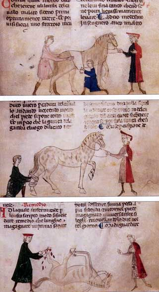 An illustration from a manuscript of the 13th Ruffus Century shows the creation of an unlucky association with myopathy (above), creating a hot clothing Ever band (middle) and the surgical treatment of a Huferkrankung. Source: Illustrated Ruffus manuscript, Codex 78 C 15, National Museums in Berlin, fol.26 r (top) , 35r (center), 39r (bottom), from: van den Driesch and Peters.