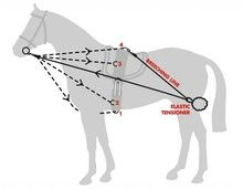 John Whitaker Training System | Horse Lunge Roller and Training System