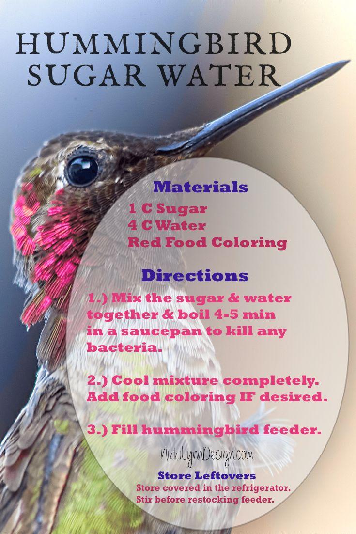 How To Get Hummingbirds To Nest By You Nikki Lynn Design Humming Bird Feeders Hummingbird Nectar Recipe Sugar Water For Hummingbirds