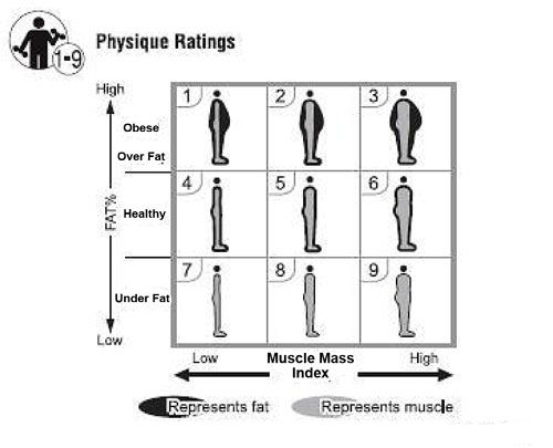 Physique Rating