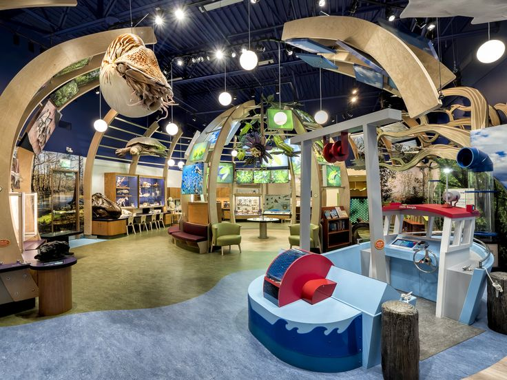 Discovery Zone at the Florida Museum of Natural History. Exhibit design by LHSA+DP.