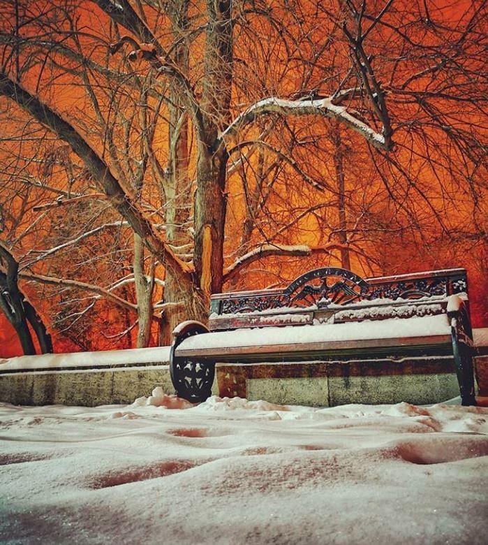 Nieve color naranja