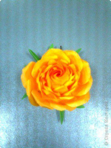 Мастер-класс,  Оригами, : Роза  Бумага 8 марта, . Фото 11