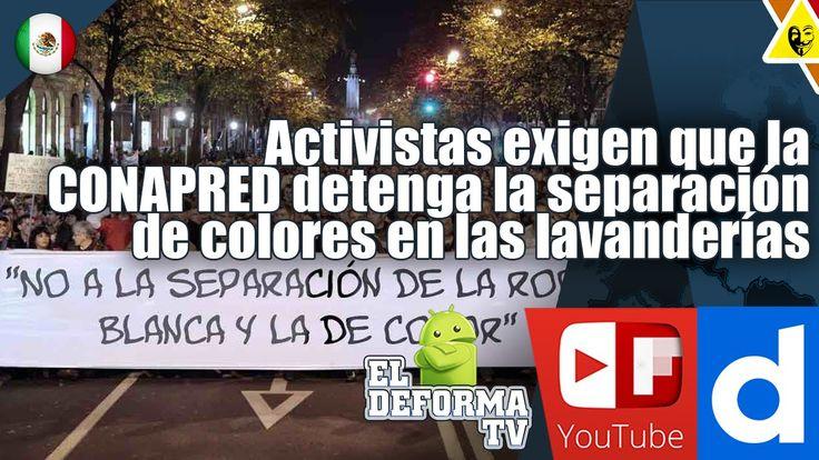 7 Activistas exigen que la CONAPRED detenga la separación de colores en ...