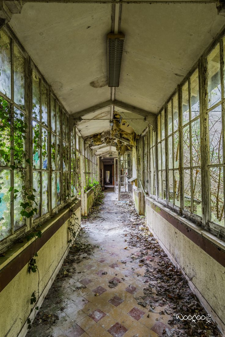 green house walks by Garry Woodford