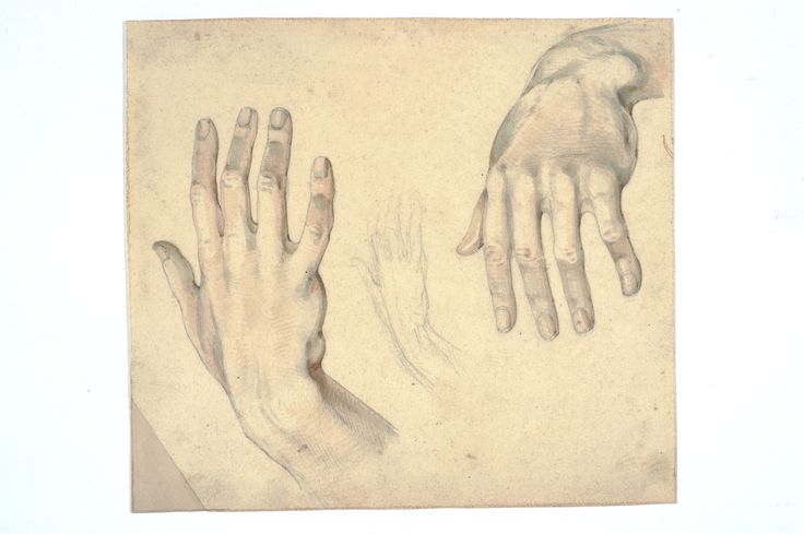 Norwid, Cyprian Kamil (1821-1883) [Studium rąk]