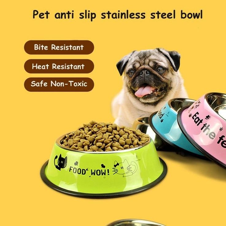 NEW 2017 'FOOD WOW' Stainless Steel Dog Bowl - Comes in 4 Colors