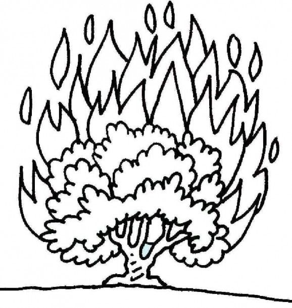 Coloring Pages Of A Bush Sunday School Coloring Pages Burning Bush Sunday School Crafts
