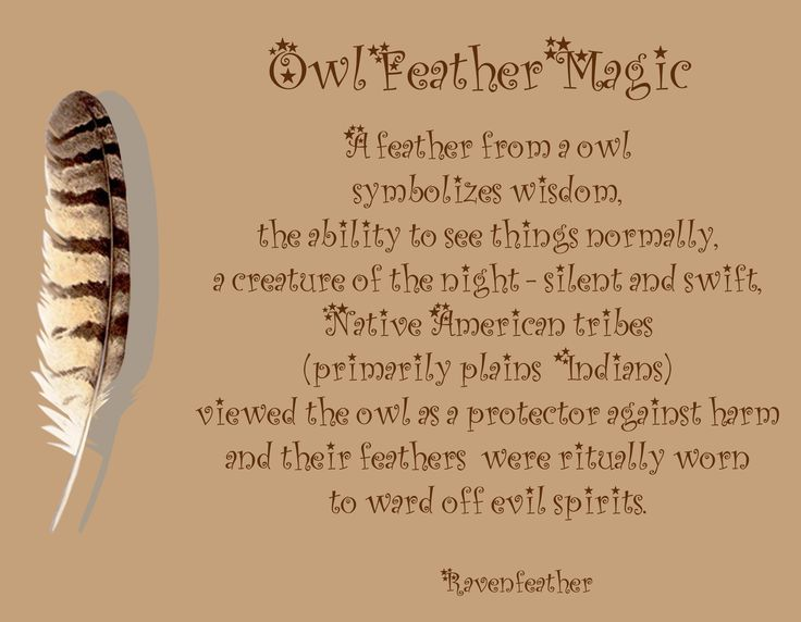 Owl feather magic: add shapeshifting, moon magick and messages of secrets and…