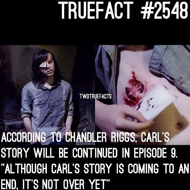"""7,227 Likes, 579 Comments - If I Posted It.. Its True. (@twdtruefacts_) on Instagram: """"So .. This is the emotional scene.. See why I wasn't answering any """"is Carl going to die""""…"""""""