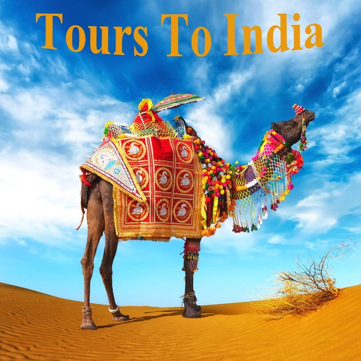 Rajasthan,India