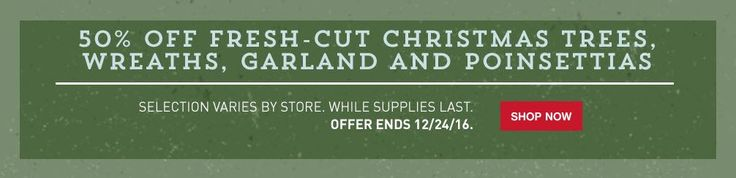 *HOT* 50% off Fresh Cut Christmas Trees, Wreaths, Garland, and Poinsettias at Lowe's - http://www.swaggrabber.com/?p=314991