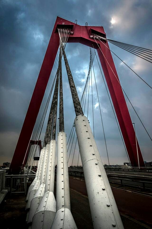 Rotterdam Willemsbrug. Biking over this bridge everyday = complete workout.