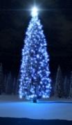 Il significato cristiano dell'Albero di Natale