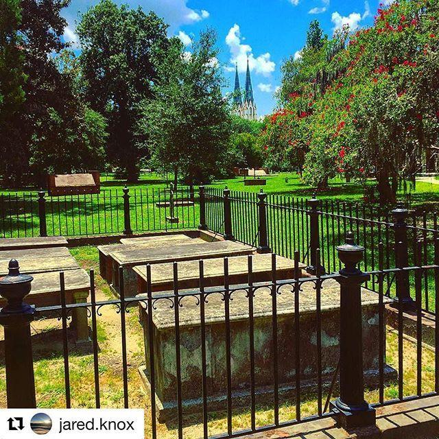 If this doesn't make you want to take a Sunday stroll around Savannah, we don't know what will! [ image via @jared.knox ] #savannah #georgia #colonialparkcemetery #historic #visitsavannah #liveinsavannah #travel #vacation #sunday #stroll #walk #cemetery #cathedral #theview #skyline #beauty #wow #roadtrip #2016 #exploregeorgia #mysavannah #thatssavannah
