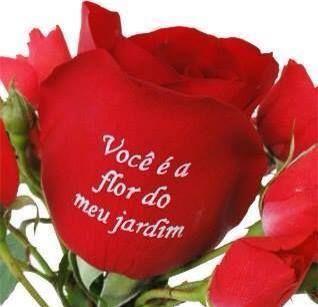 Você é a flor do meu jardim vida minha | Eu amo amar o meu ...