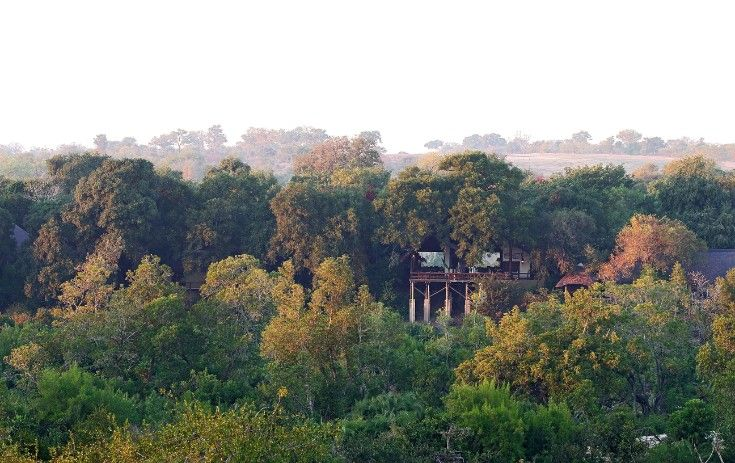 Nestled among the riverine bush, Londolozi Varty Camp looks over the Sand River where elephant are often seen feeding right in front of the rooms