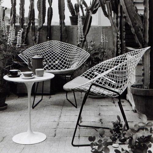 Harry Bertoia's Diamond chair, 1952, and Eero Saarinen's Tulip side table, 1956, both originally manufactured by Herman Miller.
