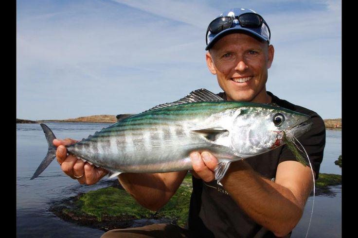 BILLEDER 6 nye danske fisk som klimaforandringer kan have givet os | Viden | DR