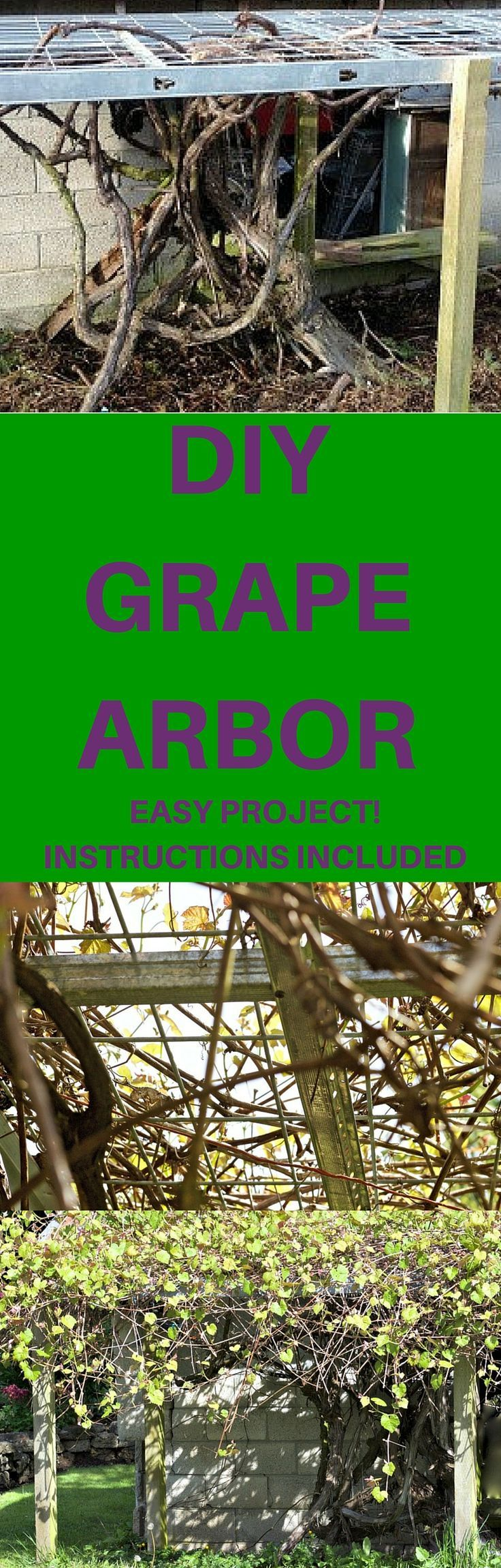 Our Old Lath Arbor Top Collapsed Building An Arbor Is The Answer Here's  How We Made A Sturdy, Long Lasting Diy Grape Arbor!