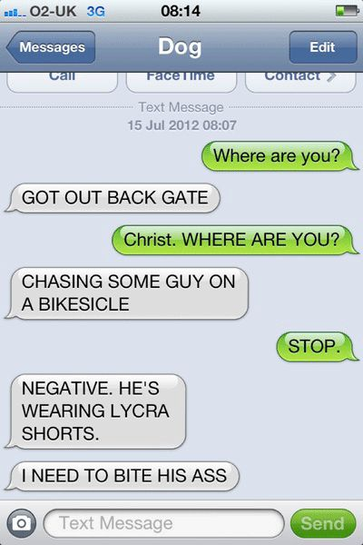 If Dogs Could Text, pets, animals, funny texts