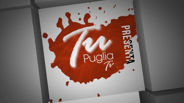 TuPuglia Tv promo by michelangelo torres.     This is a promo I did for an italian web social tv and I realized it using Adobe After Effects & Illustrator.