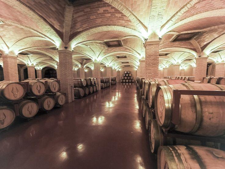 The beautiful wine cellar of Bodegas Martinez Saez in D.O. La Mancha, Spain