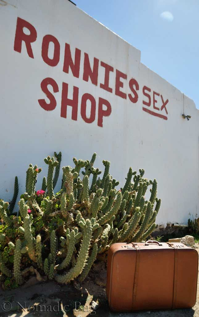 Welcome to rattlesnake country, Ronnies Sex Shop, Route 62, Klein Karoo, South Africa  Landmarks Nomadic Existence