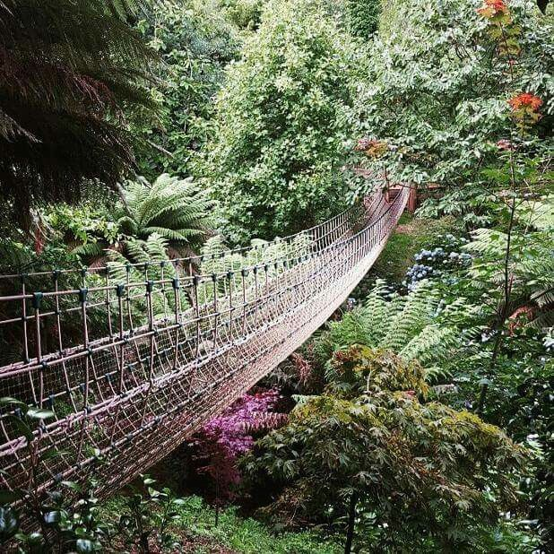 Lost Gardens of Heligan, St Austell. Cornwall