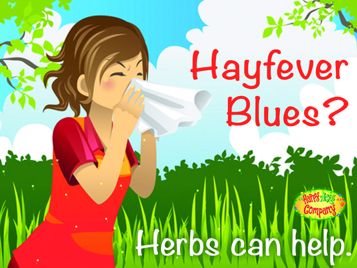 October sees us highlighting your hay fever options...NATURALLY!  Our blog article covers: * Minimising exposure * Ways to clear the nasal passages * Herbs that can help * Foods, spices and supplements *Foods to avoid and a BONUS couple of recipes for clearer breathing  You don't have to sniffle alone - we're here to help! http://www.happyherbcompany.com/hayfever-herbs