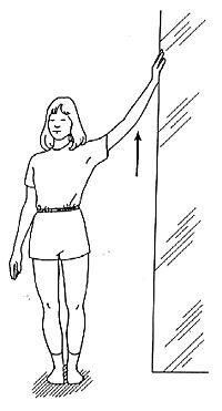 Image result for wall arm flexion