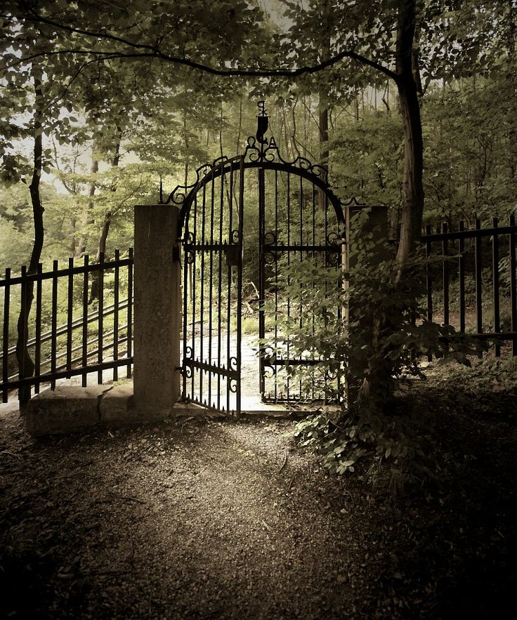 Gate into the Old Kahlenberg Cemetery, Vienna