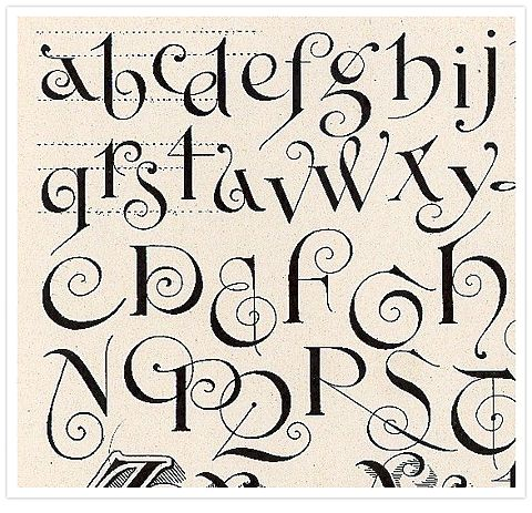 Calligraphy lettering alphabet