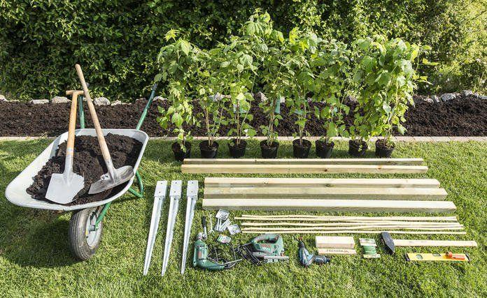 Rankhilfe Fur Himbeeren Selber Bauen Rankhilfe Pflanzen Garten Anlegen