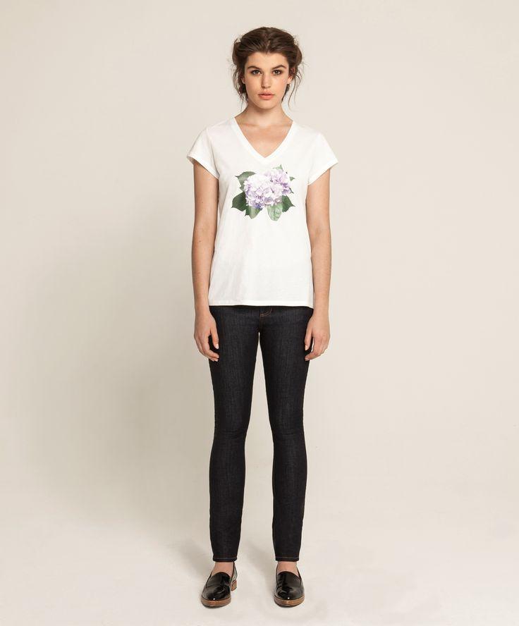 Violet V T - Hydrangea - White