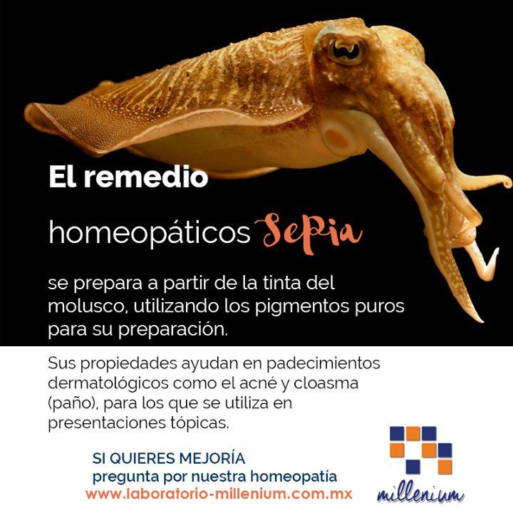 Sabías que la homeopatía utiliza elementos del reino animal vegetal y mineral? En el caso de sepia utiliza su tinta como activo básico.